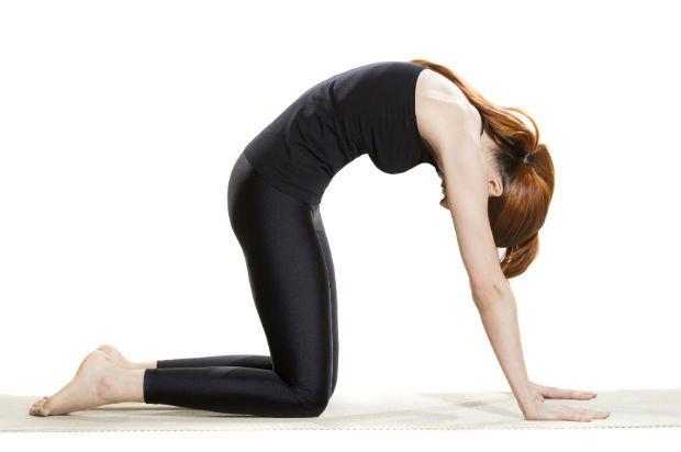 alongamento dorsal 3 cortada - Exercícios para a coluna