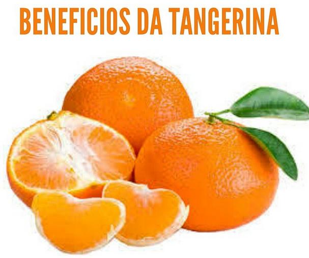 beneficiosdatangerina - Os alimentos mais nutritivos