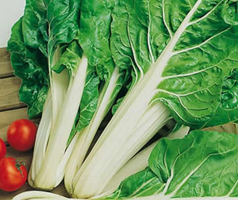 os alimentos mais nutritivos 2 - Os alimentos mais nutritivos