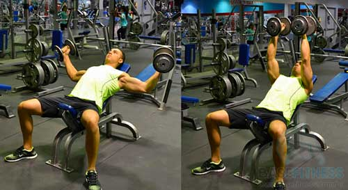exercicios para o peito 3 - Exercicios para o peito